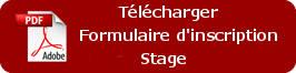 bouton_téléchargement_stage
